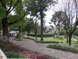 Labirinto Verde na Praça das Flores